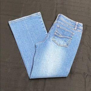 Loft Ann Taylor Flare Leg Blue Jeans